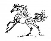Stallion - Retro Clip Art
