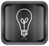 pic of light-bulb  - Light Bulb Icon  - JPG