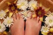 picture of toe nail  - A pair of pedicured feet in a bowl full of water - JPG