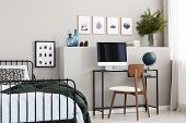 Dark Green Blanket On Single Metal Bed In Stylish Teenagers Bedroom Interior With Workspace poster