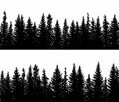Set Of Vector Horizontal Banner Silhouettes Of Coniferous Treetops Forest (spruce,fir, Fir-tree). poster