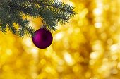 Decoration In The Form Of A Crimson Ball With A Glare On The Side Of A Green Christmas Tree And A Bl poster