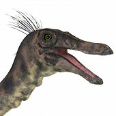 Gallimimus Dinosaur Head 3d Illustration - Gallimimus Was A Omnivorous Theropod Dinosaur That Lived  poster