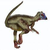 Hypsilophodon Dinosaur Tail 3d Illustration - Hypsilophodon Was A Omnivorous Ornithopod Dinosaur Tha poster