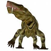 Inostrancevia Dinosaur On White 3d Illustration - Inostrancevia Was A Carnivorous Cat-like Dinosaur  poster