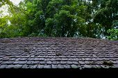 Roofing Contractors Installing House Roof Board For Asphalt Shingles. Roofing Contractor. Roofing Co poster