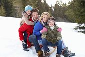 stock photo of toboggan  - Young Family Sitting On A Sled In The Snow - JPG
