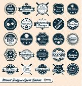 stock photo of softball  - Mixed collection of vintage style sports labels and stickers - JPG