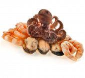 stock photo of devilfish  - Marine delicatessen cocktail of  octopus  - JPG