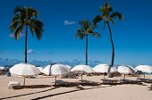 picture of waikiki  - Famous Waikiki Beach on the Hawaiian island of Oahu - JPG