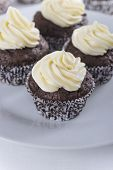 foto of buttermilk  - Chocolate cupcakes with vanilla buttermilk frosting on white plate