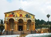 picture of gethsemane  - Church of All Nations in Jerusalem Israel