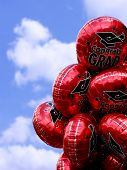 stock photo of special occasion  - Graduation balloons - JPG