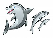 picture of cetacea  - Three cartoon dolphins on the white background - JPG