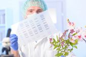 foto of anal  - Scientist analizing DNA sequence for GMO experiments with plants - JPG