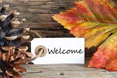 foto of hail  - Autumn Background with the Word Welcome written on a label - JPG