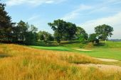 pic of fescue  - Golf green protected by native fescue rough - JPG