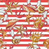 image of lifeline  - Summer Seamless Pattern with Sea Shells - JPG