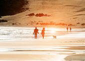 stock photo of stroll  - Silhouetted couple walking a dog on the beach - JPG