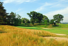stock photo of fescue  - Golf green protected by native fescue rough - JPG