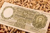 picture of pesos  - Saving Pellet Argentina Pesos  - JPG