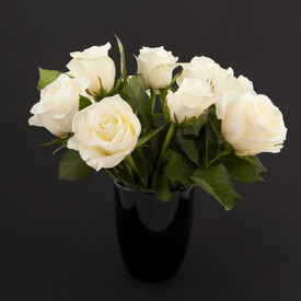 pic of funeral  - Vase white roses for a funeral isolated on black - JPG