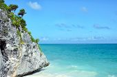 foto of vegetation  - Picturesque rock covered with little palm trees and tropical vegetation at turquoise blue sea coast - JPG