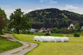 stock photo of hay bale  - hay bale at green field in a swiss village - JPG