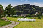 foto of hay bale  - hay bale at green field in a swiss village - JPG