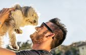 stock photo of dogging  - Dog and his owner  - JPG