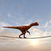 picture of dinosaurus  - Concept or conceptual abstract business metaphor as wild heavy dinosaurus balancing on rope over sunset sky background - JPG