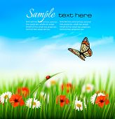 stock photo of butterfly flowers  - Nature summer colorful flowers with butterfly - JPG