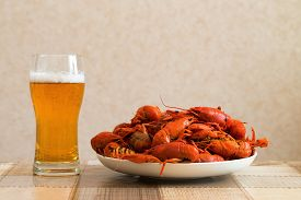 stock photo of boil  - Prepared crayfish boiled with dill and glass of beer - JPG