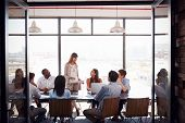Woman standing at a meeting in a business boardroom poster