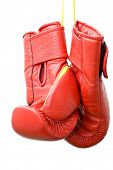 foto of boxing gloves  - boxing gloves - JPG