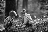Childhood And Child Friendship. Children Pick Acorns From Oak Trees. Brother And Sister Camping In A poster