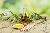 Organic Olive Oil In A Glass Bottle, Olive Branch With Olives And Bread Sticks Over Garden Backgroun poster