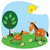 stock photo of baby animal  - Cute cartoon horse and foal in a summer meadow - JPG