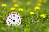 Daylight Savings Time, Spring Forward Concept - Retro Alarm Clock And Dandelion Flowers In The Grass poster