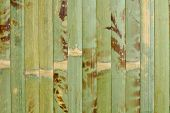 foto of homogeneous  - Sample of homogeneous texture of green wood bamboo - JPG