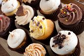 pic of fancy cakes  - Close up of some decadent gourmet cupcakes frosted with a variety of frosting flavors - JPG