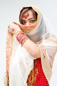 pic of bangla  - Elegant Bengali bride with veil in front of mouth isolated - JPG