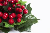 stock photo of winterberry  - Detail of Christmas garland with winterberries red ribbon and green leaves over white background - JPG