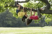 foto of upside  - Full length of playful girls hanging upside down from tree branch - JPG