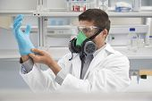 image of rubber mask  - Male scientist in a gas mask while putting on rubber glove in laboratory - JPG