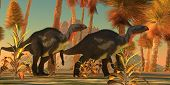 foto of behemoth  - Two Camtosaurus dinosaurs wander through a prehistoric jungle environment - JPG