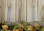 image of log fence  - Fall leaves and log border rustic wooden fence - JPG