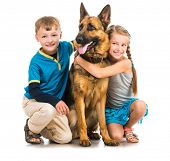 image of pre-adolescent child  - happy children with a shepherd dog on a white background - JPG