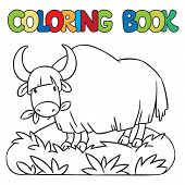 stock photo of yaks  - Coloring book or coloring picture of funny grazing wild yak - JPG