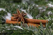 picture of christmas spices  - Christmas spices cinnamon and star anise on the background christmas tree twigs - JPG